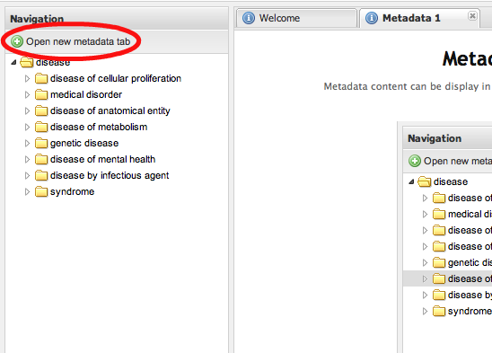 Opening a new metadata panel